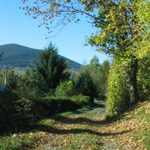 B14 Podzimní procházka