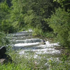 B53 potok Bílá Opava