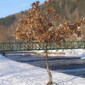 B85 Most či podpěra