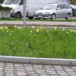 B112 Krása mezi asfalty