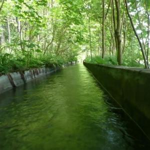 B110 Kanál v zeleni