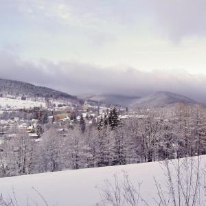 Zimni Vrbno