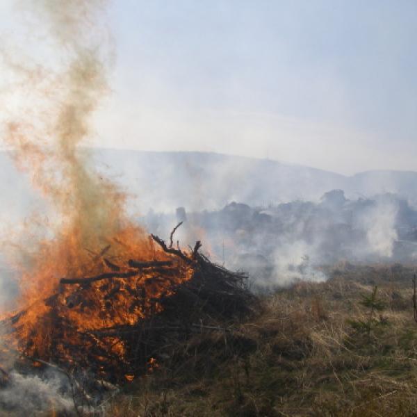 Požár lesu - Karlova studánka