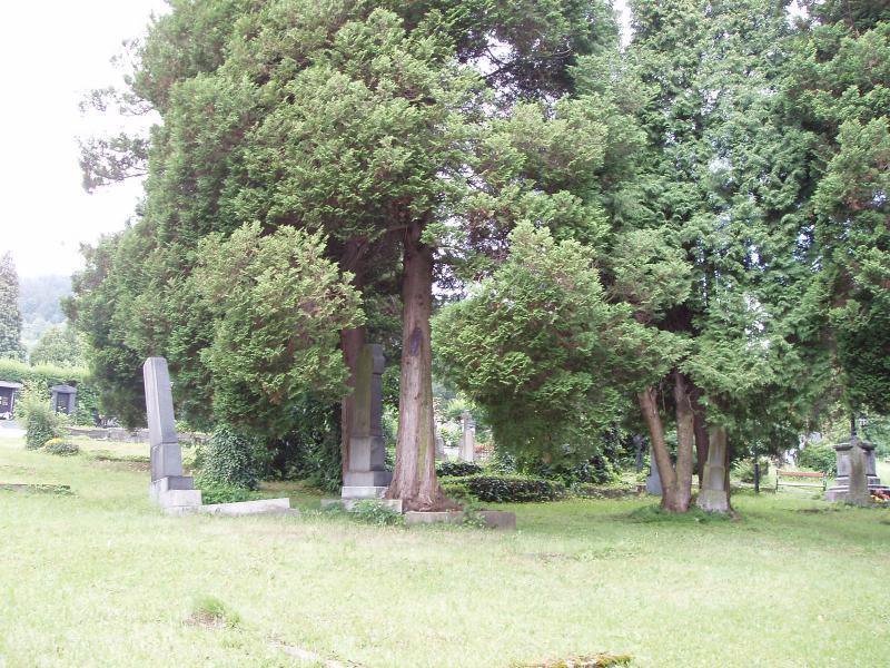 hřbitov ve Vrbně 1, obrázek se otevře v novém okně